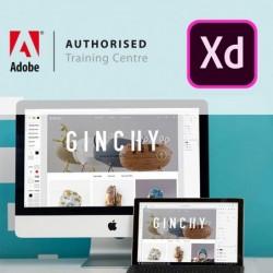 cursus Adobe XD