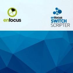 Switch Scripting Module | single licentie incl. 1 jaar onderhoud | volledige aanschaf | 1+