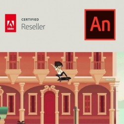 Animate CC voor bedrijven | Enterprise | Uitbreiding CC-account | Engels | Level 4 100+