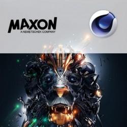 cursus Maxon Cinema4D